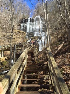 Race start at Amicalola Falls. Up the steps. I like steps.